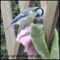 Filzvogel2